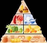Comidas y Recetas Saludables