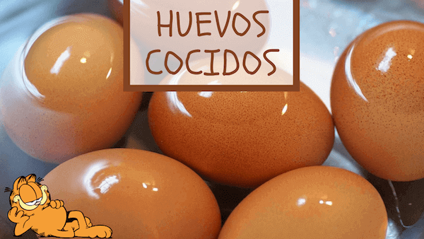 Cómo Cocer Huevos Duros Tiempo en Microondas y en Agua