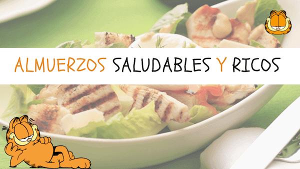 Almuerzos Saludables, Rápidos, Fáciles, Caseros, Nutritivos y Ricos