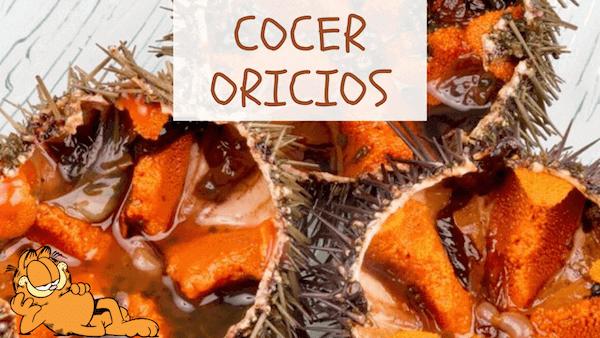 Cómo Cocer Oricios o Erizos de Mar y Tiempo de Cocción